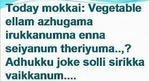 Vegetable mokkai