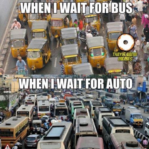 Bus Vs. Auto