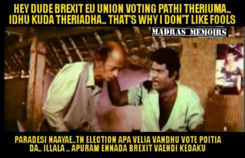 Brexit Election Mokkai