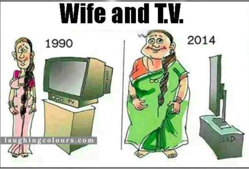 Wife Vs. TV Comedy